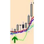 FX実践検証評価