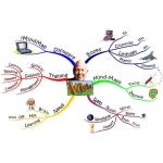 マインドマップ Mindmap