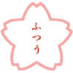 【JUGEM公認】桜2008