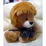 Nikon デジタル一眼カメラ