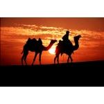 中東 QATAR