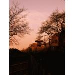 奈良の寺社仏閣