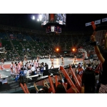 bjリーグ(プロバスケットボール)