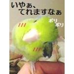 愛する小鳥たち