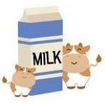 卵・乳製品の知恵