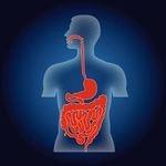 逆流性食道炎・慢性胃炎・急性胃炎・十二指腸潰瘍