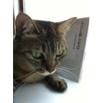猫ちゃん関連本・雑誌・写真集