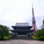 東京の神社仏閣