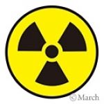 放射線測定値