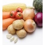 食材の保存法・調理