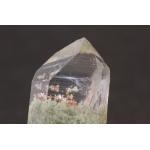 鉱物 化石