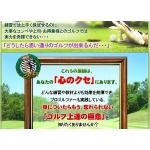 ゴルフ脳強化プログラム 大滝保 評判口コミ