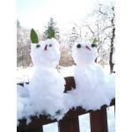 冬の定番♪