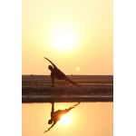 Yoga/ヨーガ/ヨガ