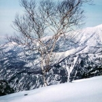 スキー&スノボー