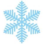 【JUGEM公認】雪2008